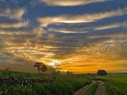 Agricultura ecológica en La Rioja