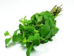 Recetas con Hierbabuena (incluye sopa de hierbabuena)