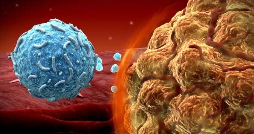 生控基因首創新免疫細胞療法