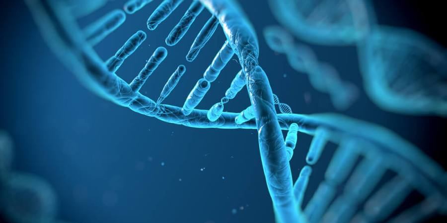 生技大咖齊聚 談創新癌症免疫療法