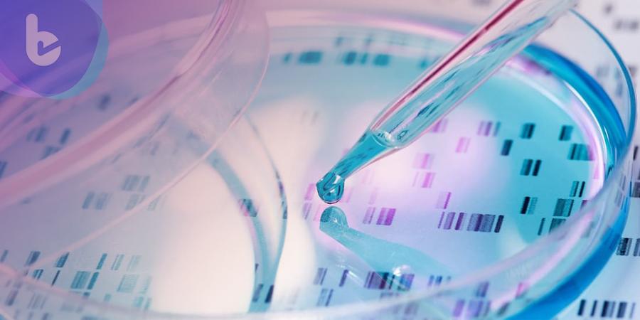 自體細胞培養人工組織 細胞層片技術克服人工組織障礙