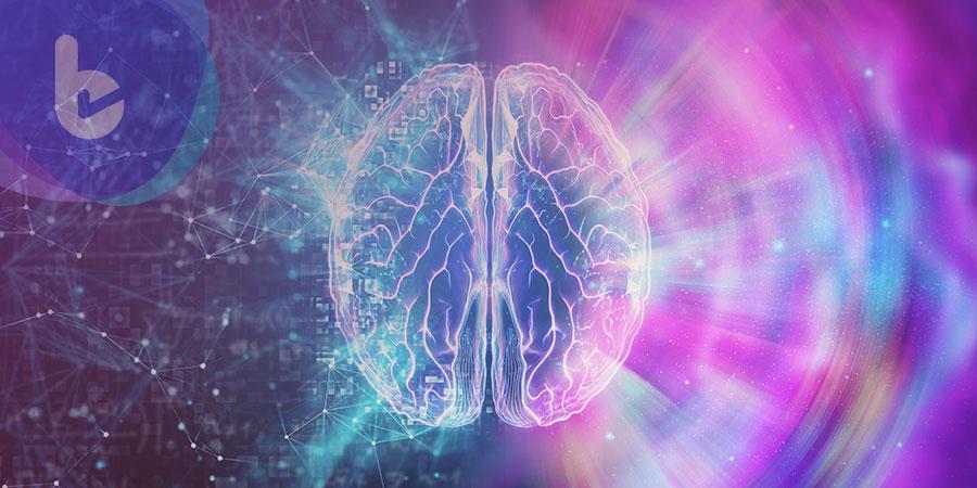 記憶是如何形成和消失的?科學家完整說明
