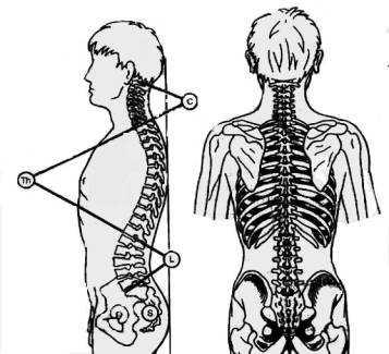 zestaw ćwiczeń profilaktycznych w bolach kregoslupa.pdf