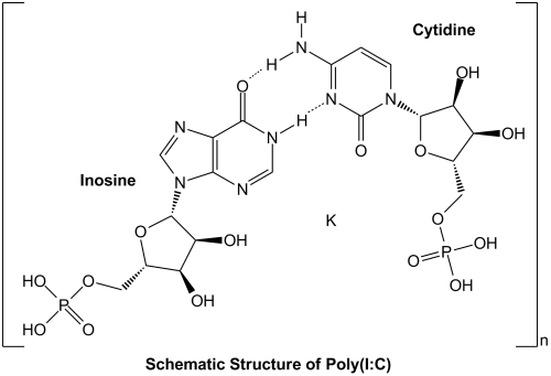 small resolution of polyinosinic polycytidylic acid poly i c endotoxin free sterile innaxon biomol com