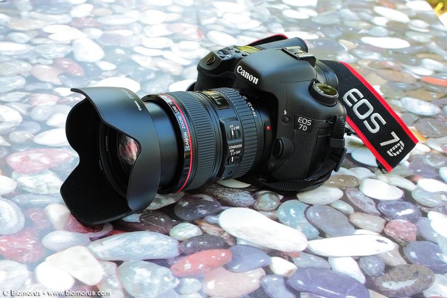 Canon EF 24-105 f/4 L IS USM montato su Canon EOS 7D.