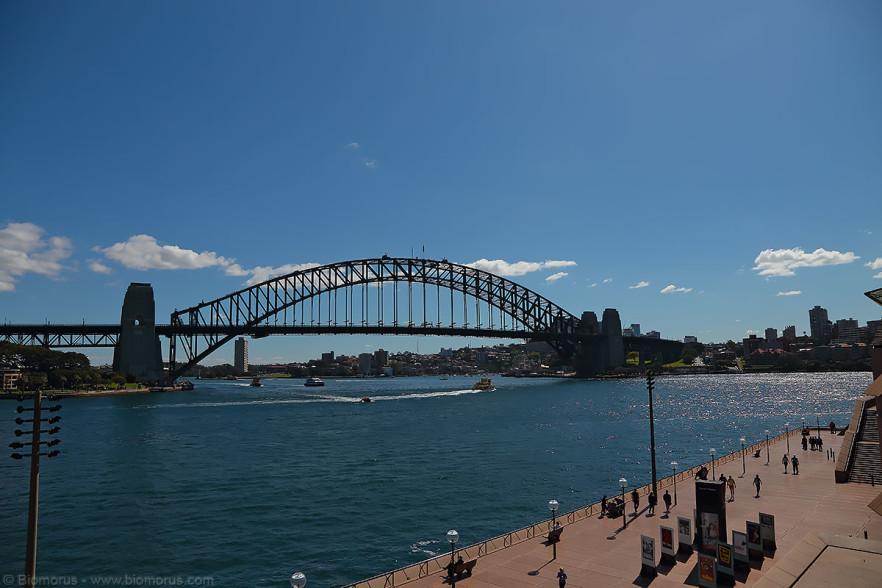 Harbour Bridge – (Dati di scatto: Canon EOS 6D, Canon 24-105 f/4 L IS USM, 1/1000 sec, f/8, ISO 100, mano libera).
