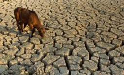 sa-drought