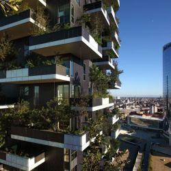 L'éco-jardinage et la culture hydroponique indoor