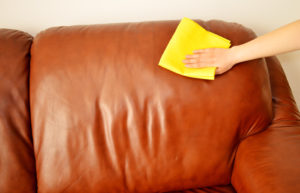 Biopolish Untuk Sofa Oscar Cara Praktis Bikin Sofa Oscar Nyaman Dan Tidak Mudah Retak