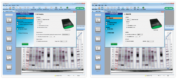 Software developed for the Gel Doc EZ imager