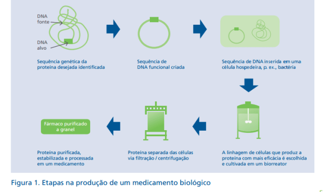 Etapas-medicamentos-biológicos