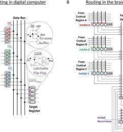 how thalamic relays might orchestrate supervised deep training andnorton glue systems wiring diagram 9 [ 1280 x 896 Pixel ]