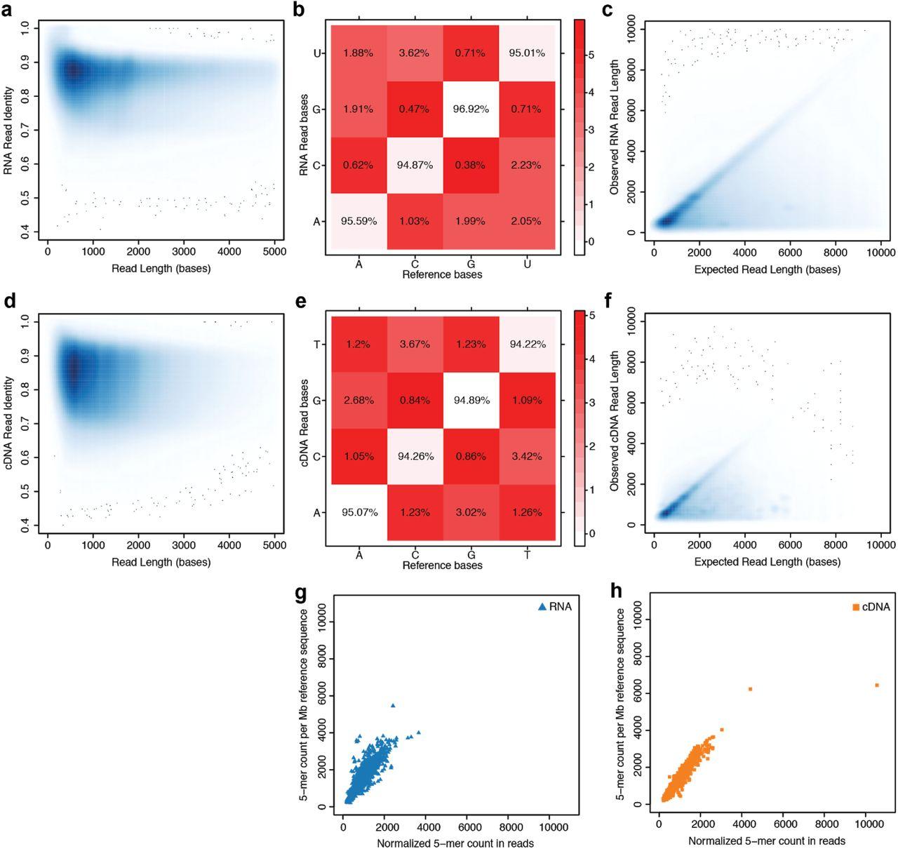 small resolution of nanopore native rna sequencing of a human poly a transcriptome biorxiv