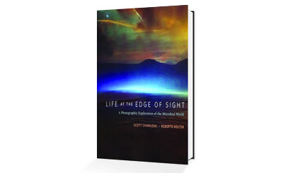 Life at the Edge of Sight