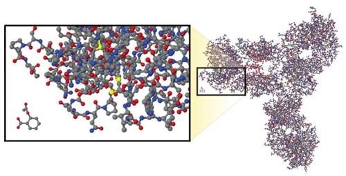 Comparativa entre un anticuerpo monoclonal biológico y una molécula de ácido acetilsalicílico. Fuente: Developing