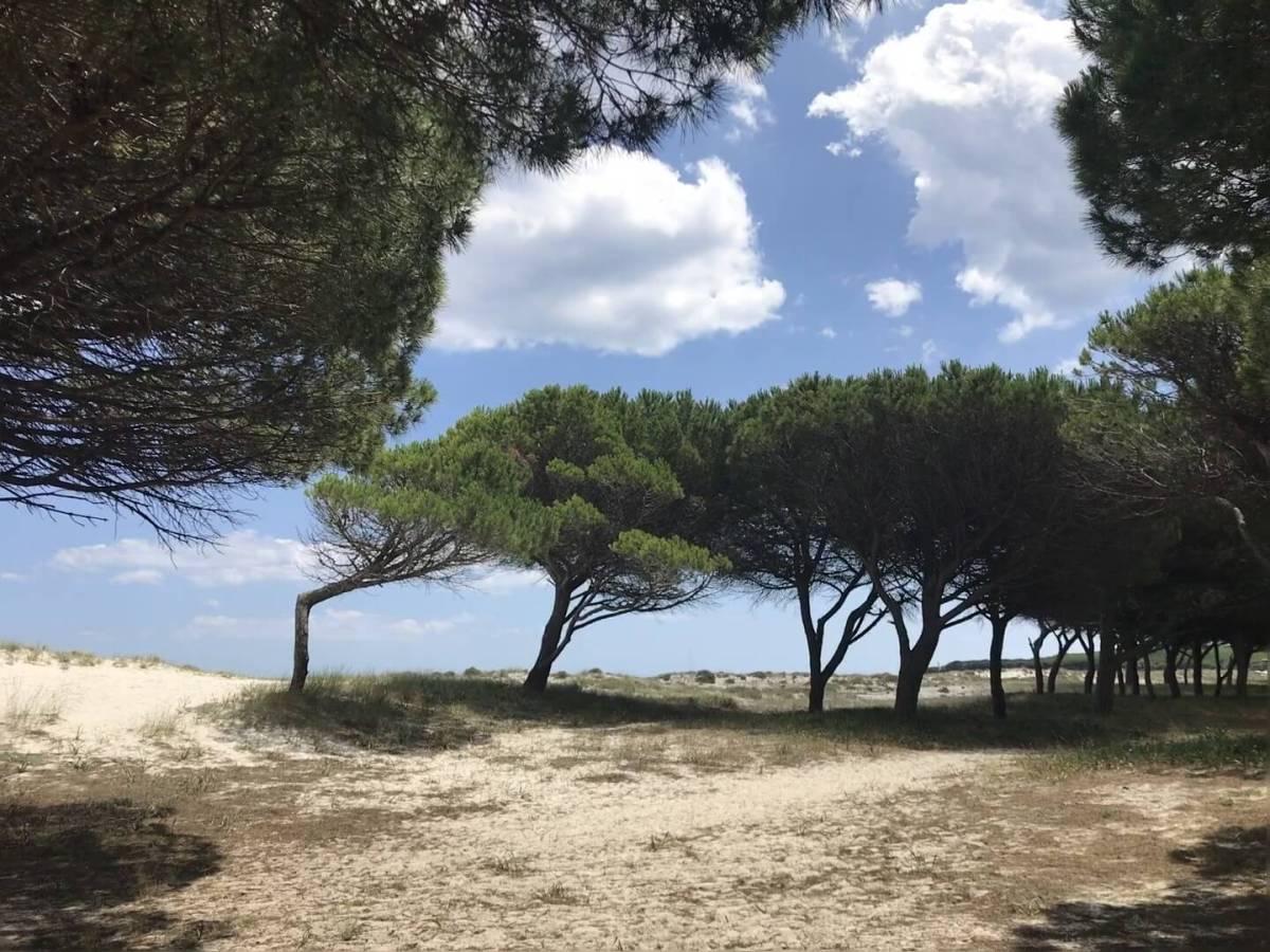 Sardinien9