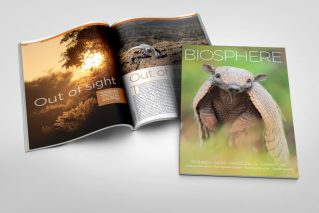 Biosphere Issue 23