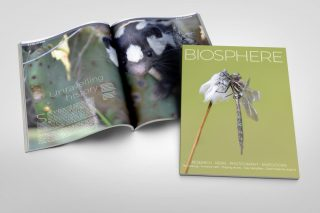 Biosphere Issue 26