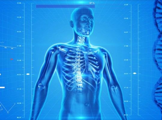 anatomy-high-tech