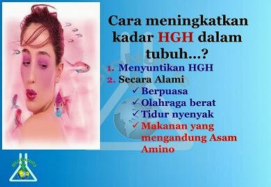 Cara Meningkatkan HGH