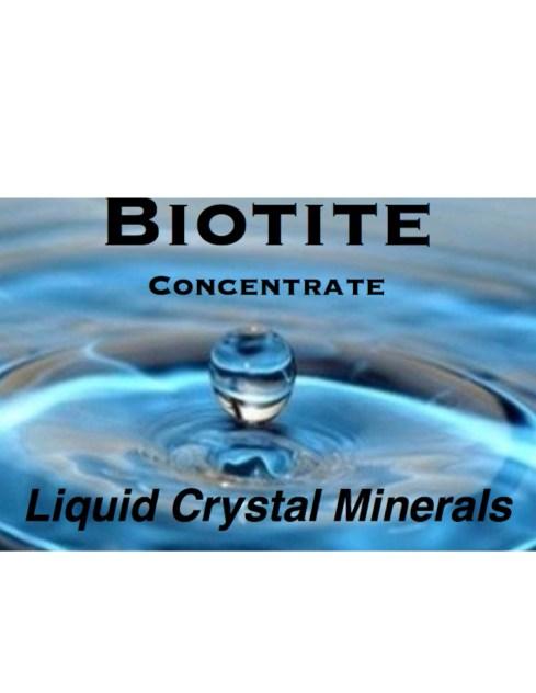 Biotite Logo Enlarged 3