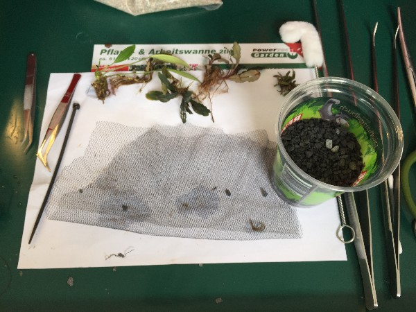 Wabi sabi for the planted aquarium is easy to make.