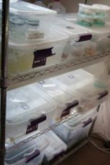 Storage Racks, Plastic Totes, and Shop Lighting in my Plant Tissue Culture Project.