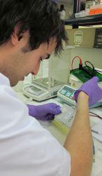Medición de actividad enzimática en laboratorio