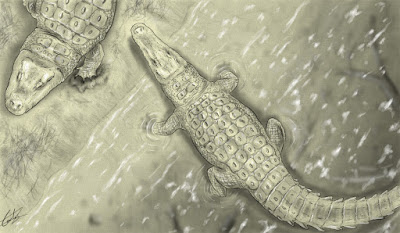 Lohuecosuchus y Agaresuchus por Carlos de Miguel