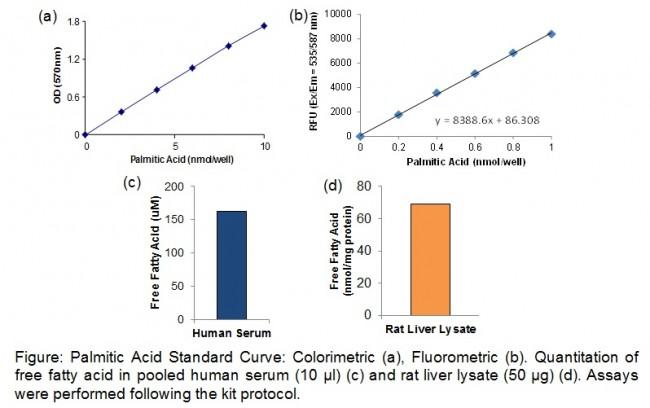 長鏈游離脂肪酸呈色螢光分析套組 | Free Fatty Acid Quantification Kit貨號K612-100 | 太鼎生物科技