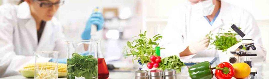 Χημική ανάλυση τροφίμων