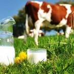 Η αξία του γάλακτος στην ανάπτυξη των ανθρώπων