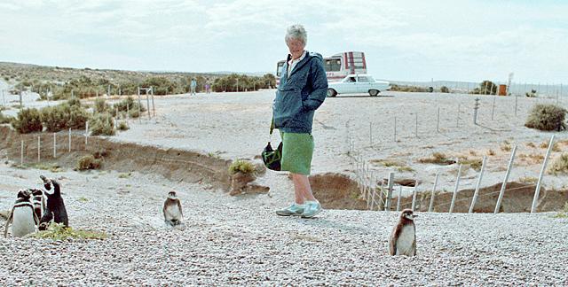 Argentina-Jean-pinguinos