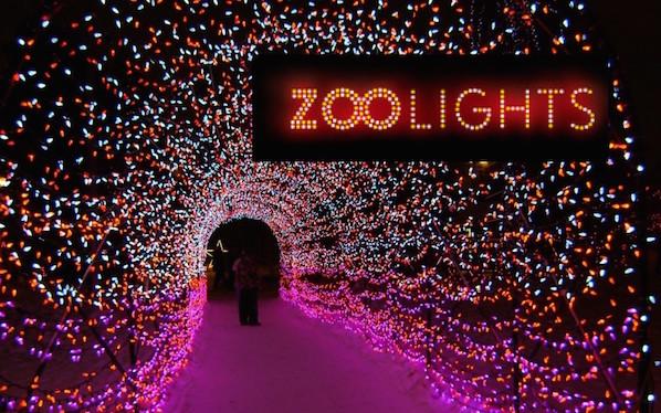 Zoo Lights Hours Calgary