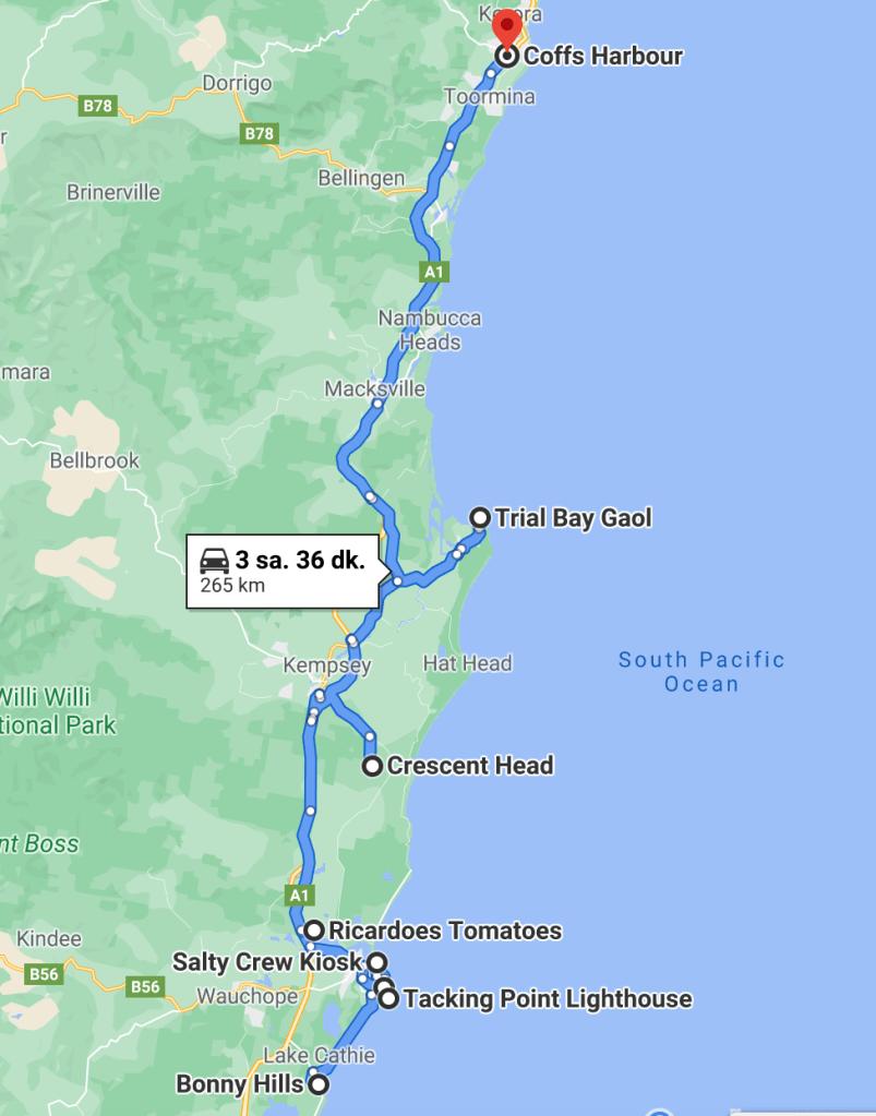 Gezi 3. Gün: Port Macquarie to Coffs Harbour