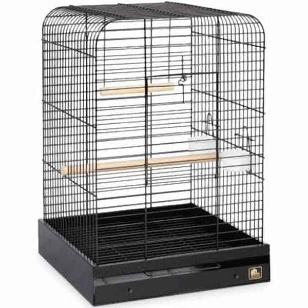 Flat Top Bird Cage for Medium Large Parrots by Prevue 125 Black
