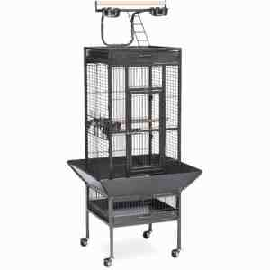 Play Top Bird Cage for Small Parrots by Prevue 3151 Black