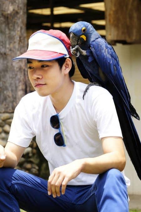 Asian man with beautiful Hyacinth macaw parrot