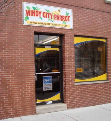 front of Windy City Parrot Birdie Boutiquer