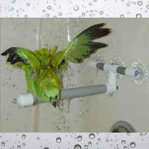 Shower & Window Fold-out Perch by Pollys Pet Products Small