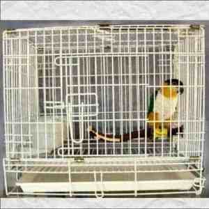 Fold Away Travel Cage Carrier for Medium Parrots #602 23×17 White