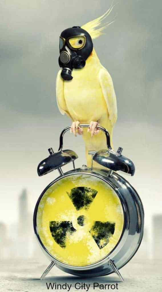 cockatiel with gas mask sitting on alarm clock with nuclear warning face