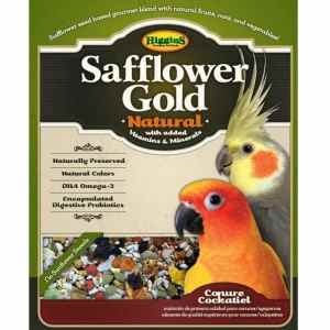 No Sunflower