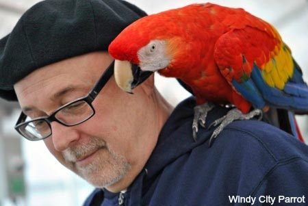 Your parrot may out live you – What's your plan?