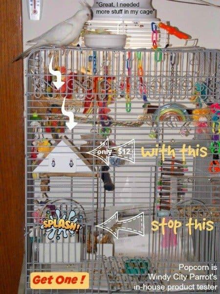 bird cage with coakctiel on top using kings poop guard over bird feeder dish
