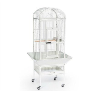 Dome Top Bird Cage for Small Parrots by Prevue 34512 White
