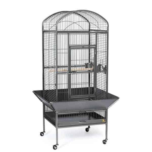 Dome Top Bird Cage for Medium Parrots by Prevue 34521 Black