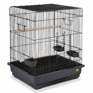 Flat Top Parrot and Small Bird Bird Cage by Prevue 25217 Black
