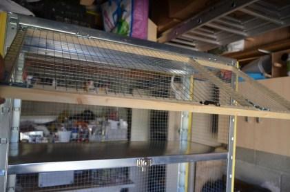 cage repro 7