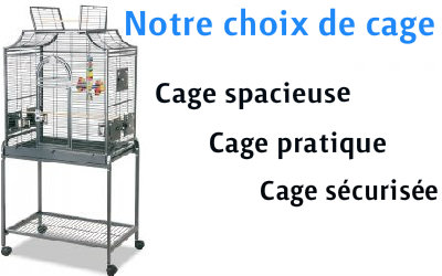Cage: Notre sélection pour les perruches